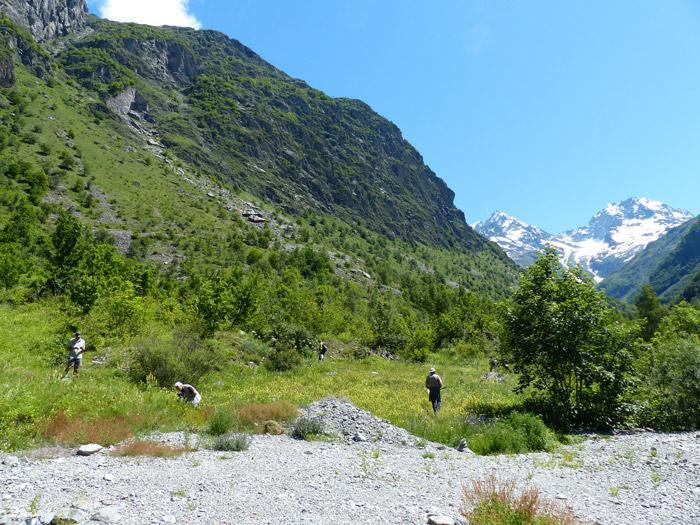 Les entomologistes du Grenha travaillent à l'nventaire des invertébrés dans le Valgaudemar - juin 2020