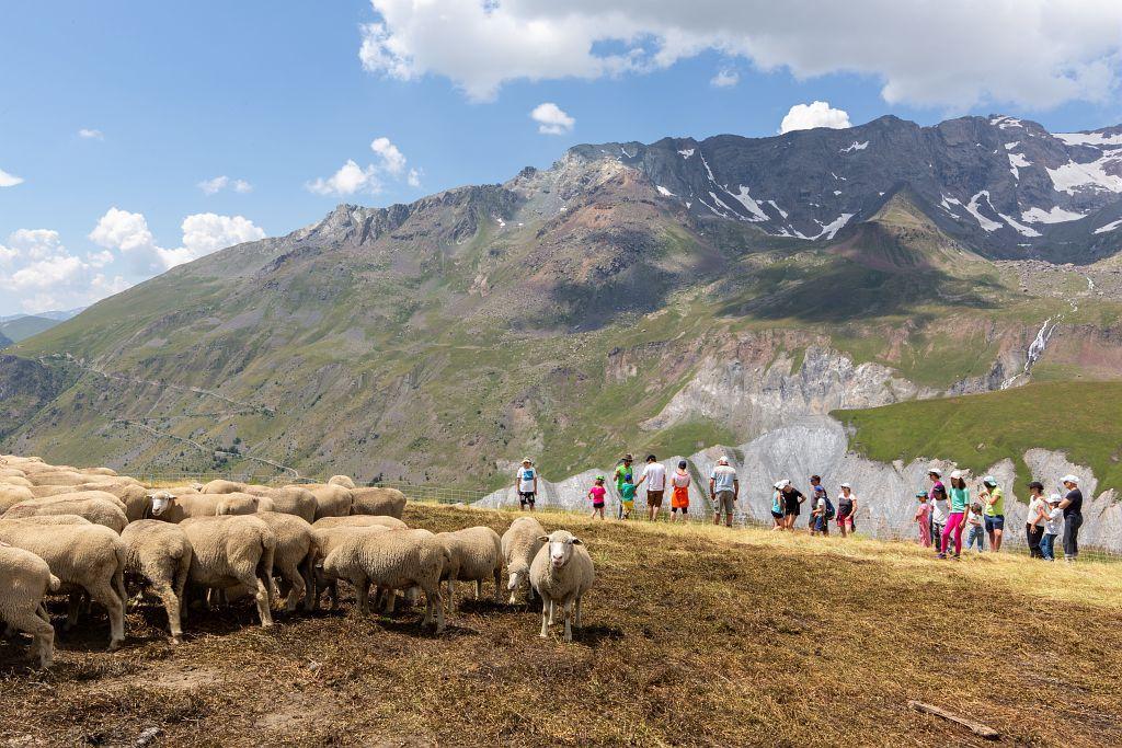 Sensibilisation au pastoralisme - maison des alpages en Oisans - © Thierry Maillet - Parc national des Ecrins