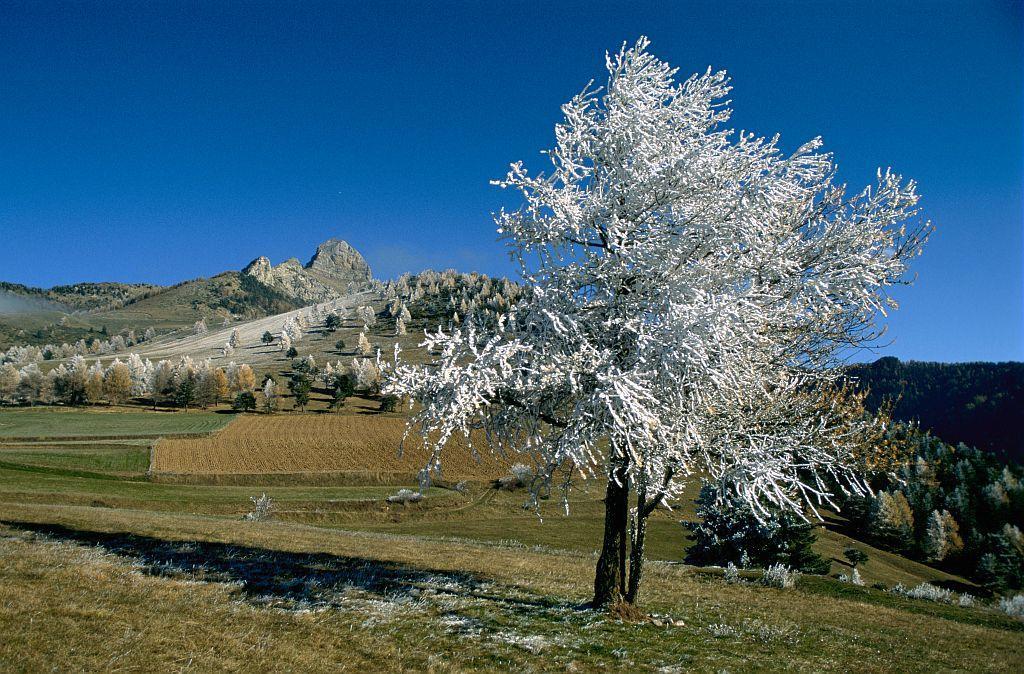 Au col de Moissière © Pascal Saulay -Parc national des Ecrins