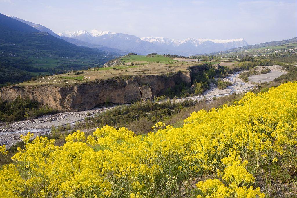 Terrassse fluvio-glaciaire - Châteauroux-les-Alpes - © Pascal Saulay -  Parc national des Ecrins
