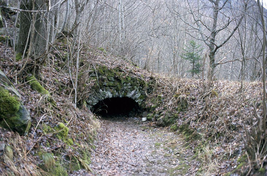 Canal des Herbeys entre La Chaup et le Séchier ©Dominique Vincent - Parc
