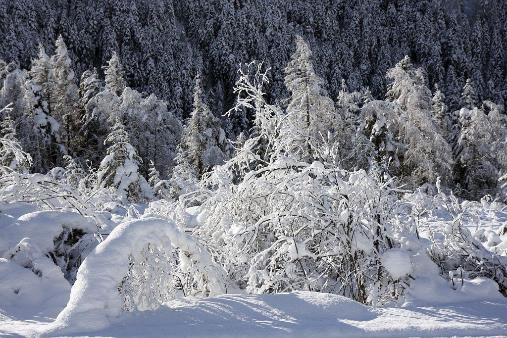 Neige à la base de loisirs © Marc Corail - Parc national des Ecrins