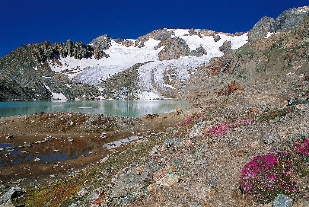 Le glacier des Quirlies © Emmanuel Thibert - Parc national des Ecrins
