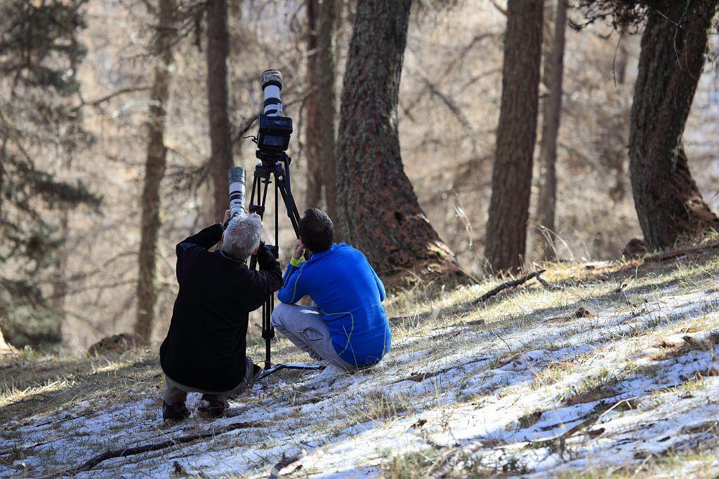 Prises de vue © M.Corail - Parc national des Ecrins