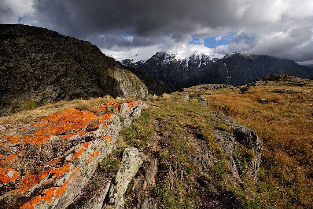 Le massif de l'Oisans depuis le plateau d'Emparis © M. Coulon, PNE