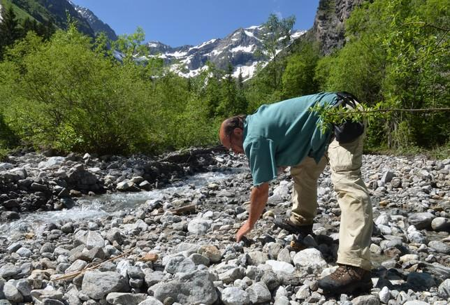 Prospection en ruisseau ©DFiat