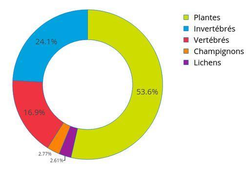Données totales : Pourcentage du nombre d'observations