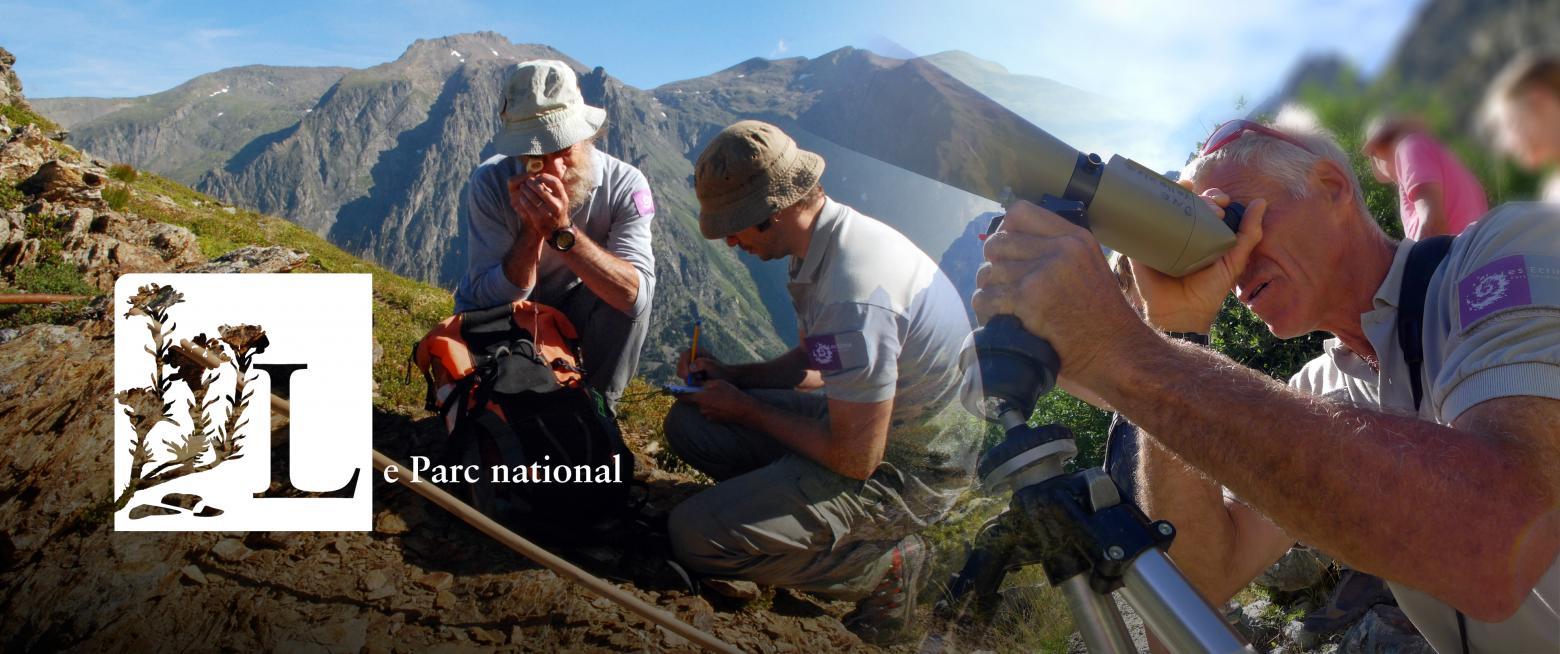 Des missions de connaissance et d'observation. © Christophe Albert, Thierry Maillet - Parc national des Ecrins