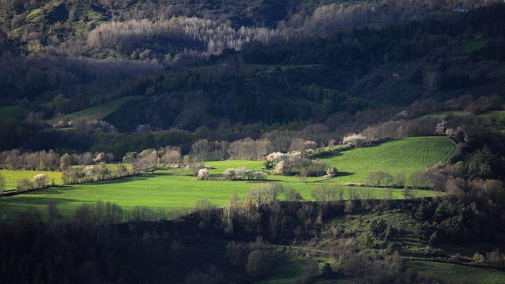 Plateau de Buissard © Marc Corail - Parc national des Ecrins