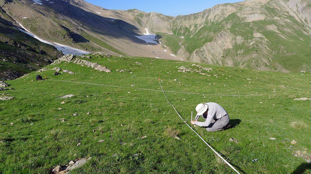 Alpages sentinelles - Alpage de Rouannette - Orcières ©Papet Rodolphe - Parc national des Ecrins
