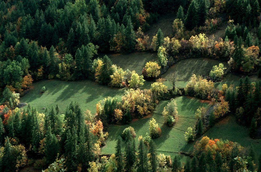 Le bocage de Réallon ©Mireille Coulon - Parc national des Ecrins