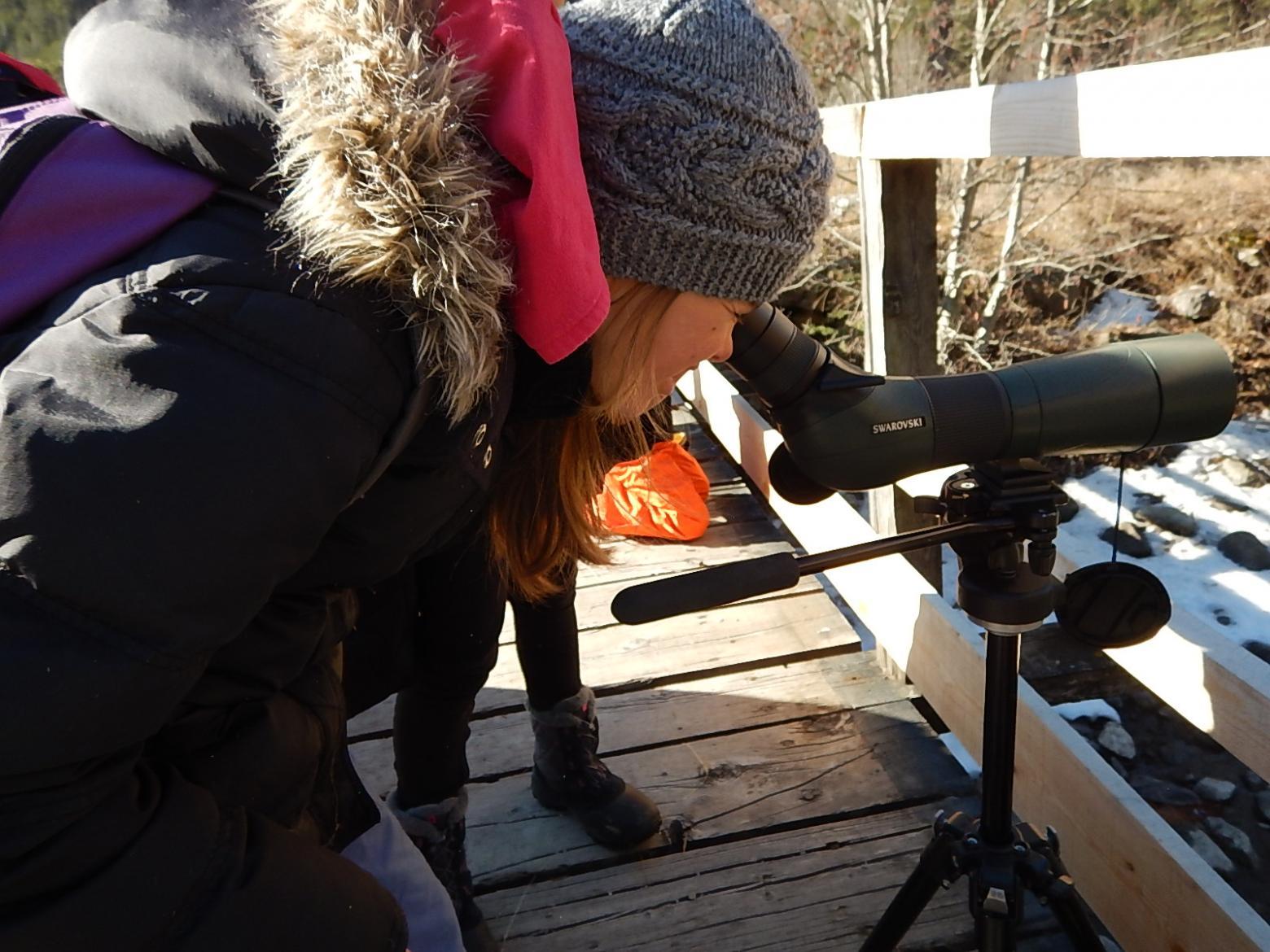 ecole freissinières - cincle plongeur - projet avec le Parc national des Écrins