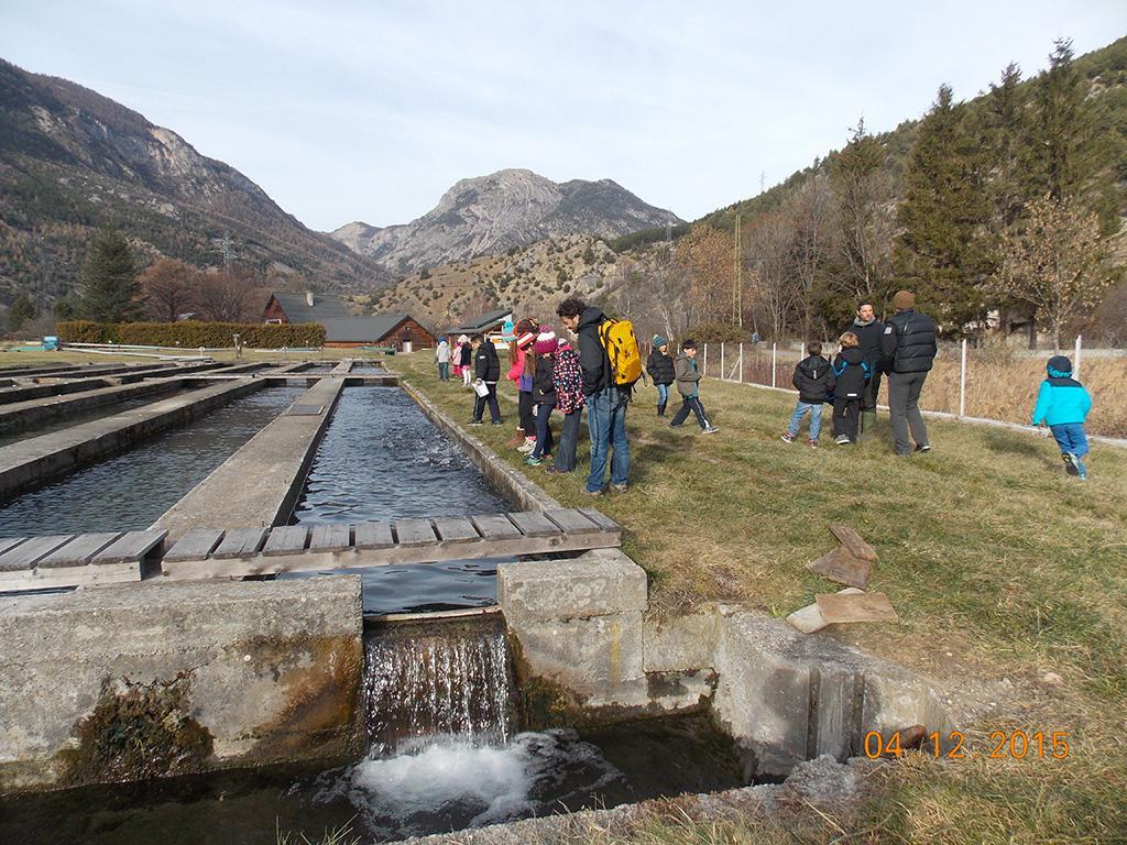 école de Freissinières - dec 2015 - visite à la pisciculture avec le Parc national des Ecrins