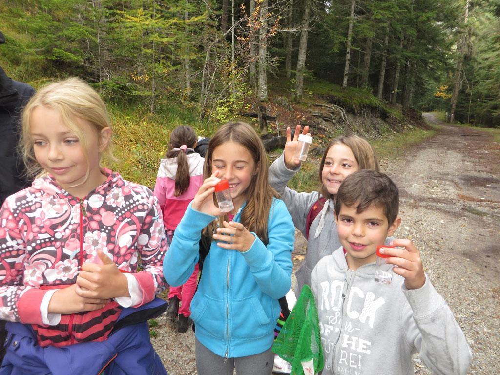 école de Freissinières - oct 2015 - sortie invertébrés vers la Biaysse - Parc national des Ecrins