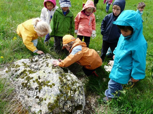 pédagogie ecole Monêtier-les-Bains - Parc national des Ecrins - 2015-2016 -  marmotte