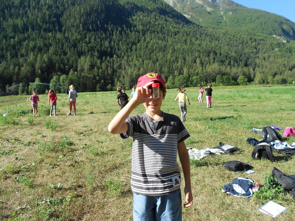Ecole Freissinières - projet 2016-2017 avec le Parc national des Ecrins sur les insectes