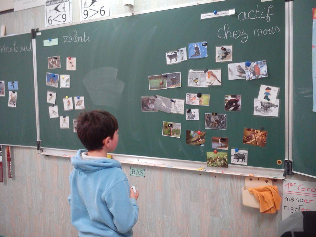 projet pédagogique école de Saint-Bonnet avec le Parc national des Ecrins - 2017