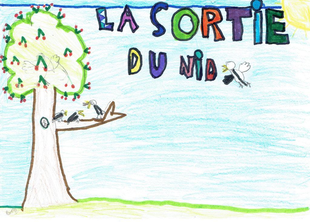 Mésange charbonnière - projet pédagogique école La Bessée - 2017-2018 avec le Parc national des Écrins