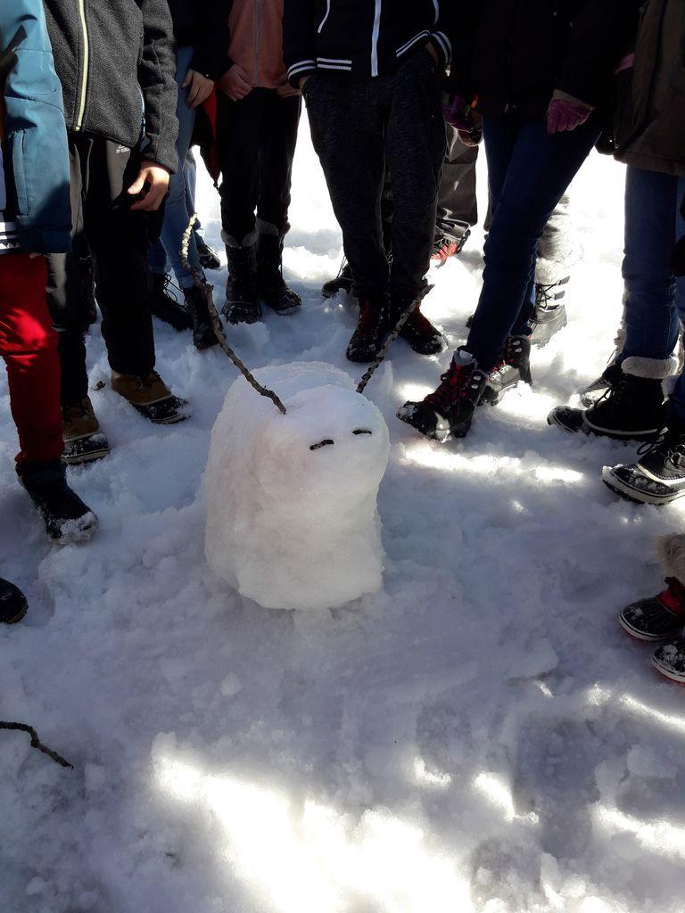 La neige et ses conséquences  - collège Vauban Briançon - hiver 2019 - photo Parc national des Ecrins