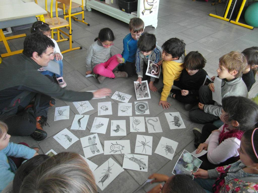 """Jeunes découvreurs l'Argentière-la-Bessée - projet """"petites bêtes"""" avec le parc national des Ecrins - 2018-2019"""