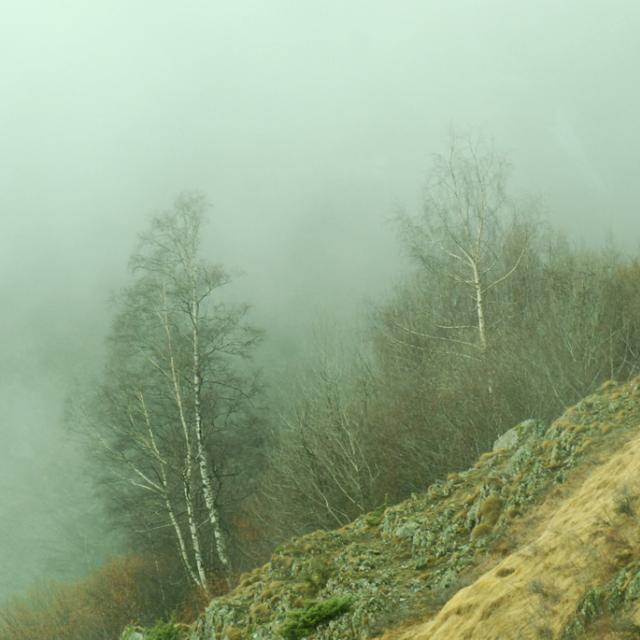 Temps humide en Valgaudemar - mar 2015 - © Olivier Warluzelle - Parc national des Ecrins