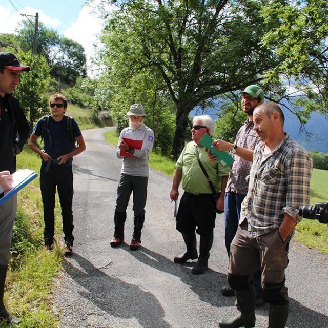 Concours prairies fleuries - Valgaudemar - juin 2015 - © Agnes Thiard - Parc national des Ecrins