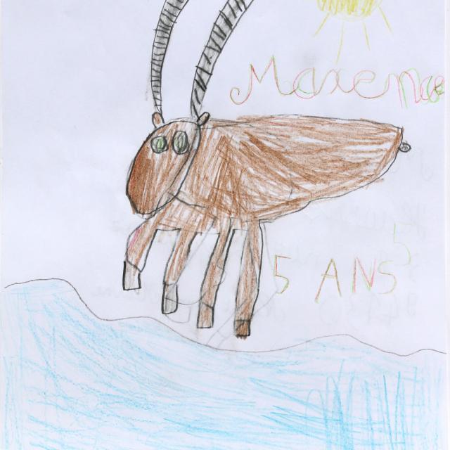 Maxence Hausser-Buchle - 2ème prix 5/7 ans concours dessin hiver 2015 - Parc national des Ecrins