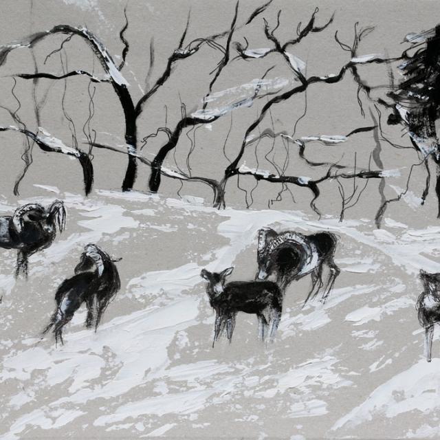 C Langlois - 2ème prix adulte - Lili-Jeanne Ferré - 2ème pirx 8/10 ans - concours dessin hiver 2015 - Parc national des Ecrins