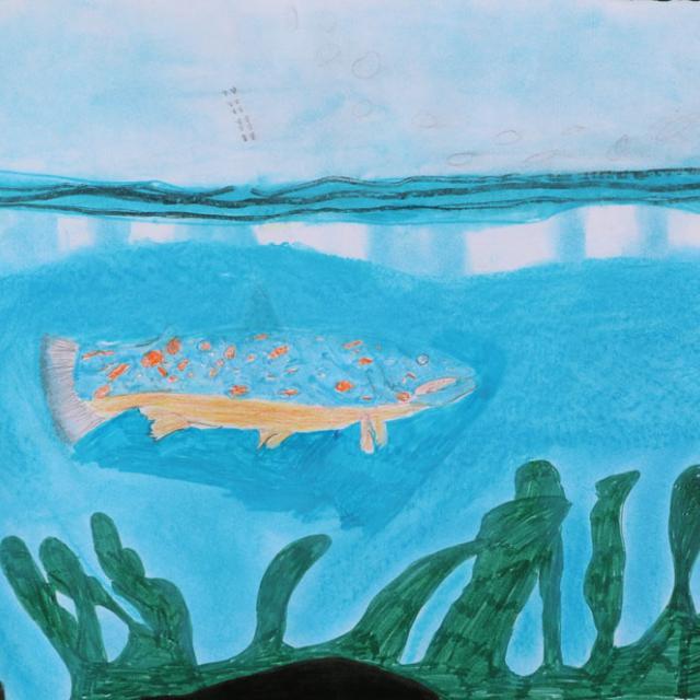 3ème prix 8-10 ans - concours dessin hiver 2015 - Parc national des Ecrins