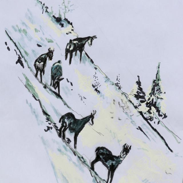 David Logier - 3ème prix adulte - 3ème prix - concours dessin hiver 2015 - Parc national des Ecrins
