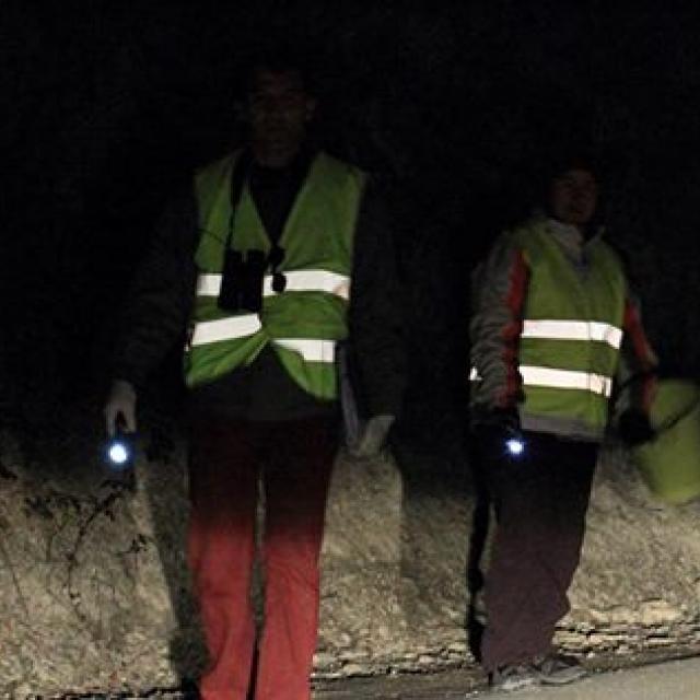 Bénévoles LPO Embrunais - sauvetage crapauds bords de route © LPO