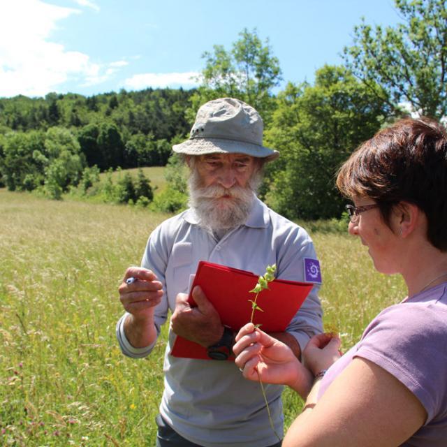 Echange autour de la botanique, lors du passage du jury en juin 2015 © Parc national des Ecrins