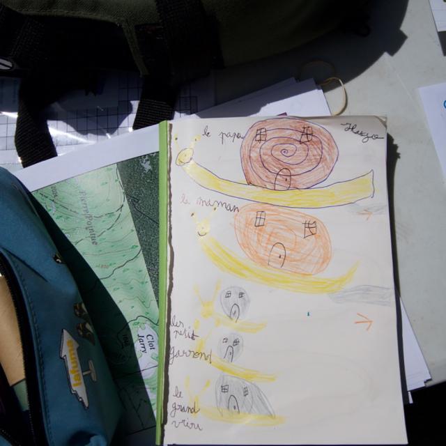 escargot - dessin -  photo J.Charron - Parc national des Ecrins