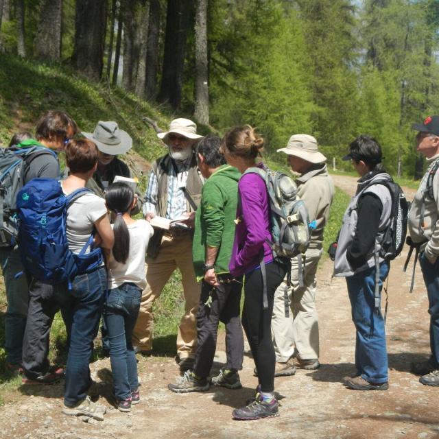 Pierre Salomez, botaniste retraité du Parc national, toujours passionné au sein de l'association Bérardie - Photo Victor Zugmeyer - Parc national des Ecrins