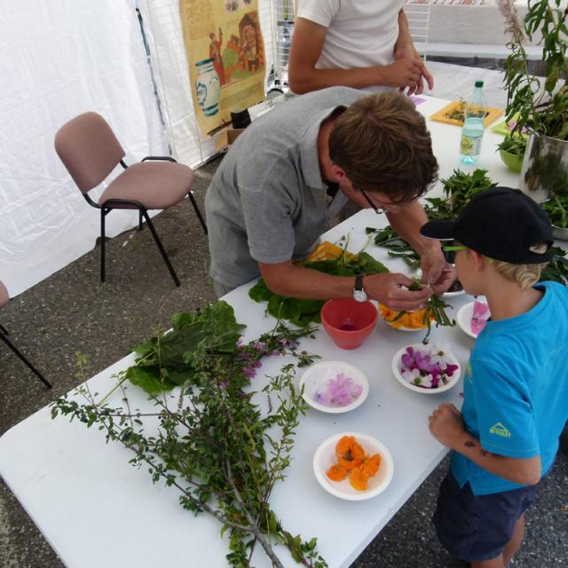 L'echo des mots - 2015 - atelier plantes du Parc national des Ecrins