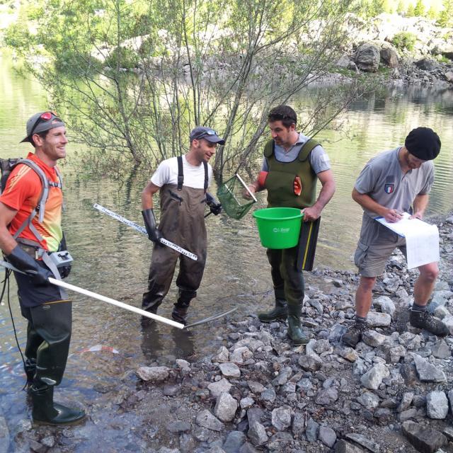 Pêche électrique   -réserve intégrale du Lauvitel - Parc national des Ecrins