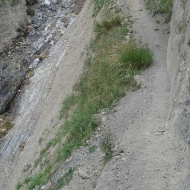 sentier vallon Côte Belle - Valjouffrey -  © S D'houwt - Parc national des Ecrins