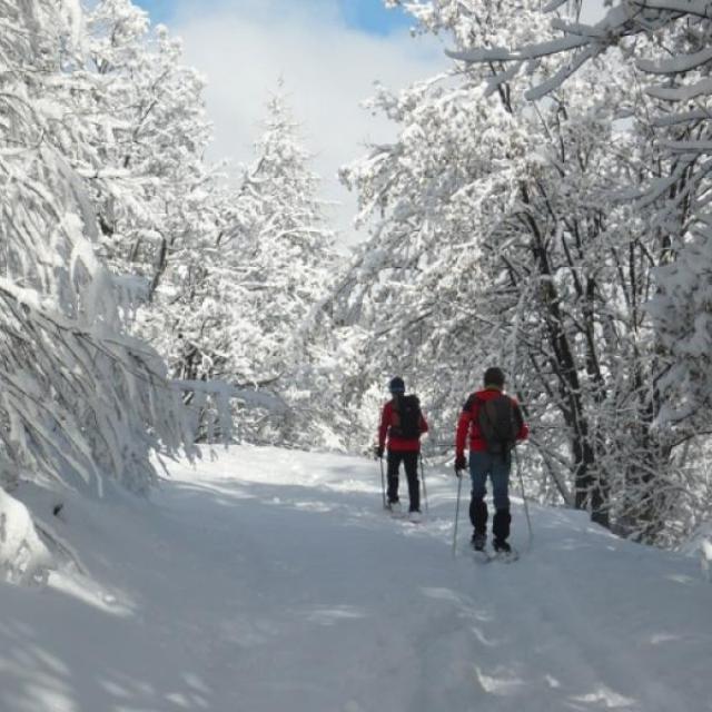 Balade raquettes avec VIsa trekking dans les Ecrins - Esprit parc national
