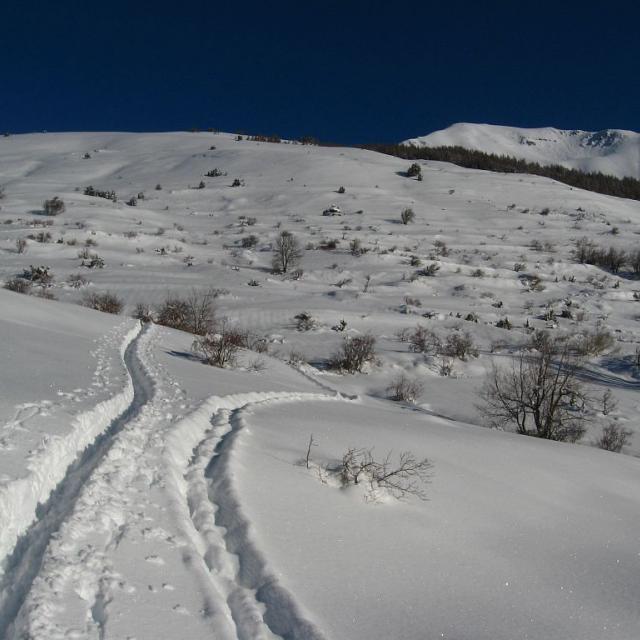 randonneurs et bouquetins, des traces sur un même territoire © C.Coursier - Parc national des Ecrins