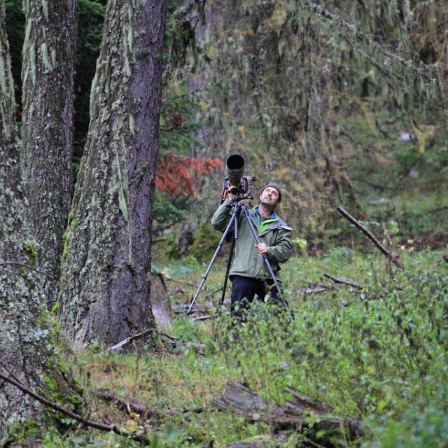 David Allemand - forêts du Champsaur © M.Corail - Parc national des Écrins