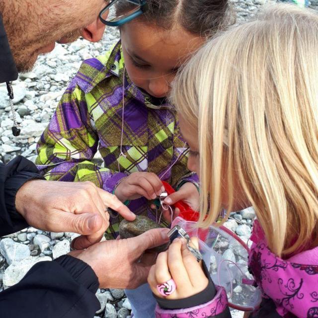 Le monde des insectes, à l'école de Saint-jean Saint-Nicolas - Parc national des Écrins