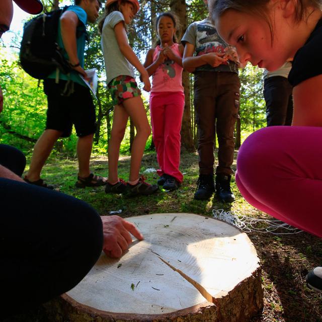 Ecrins de nature 2018 au Bourg d'Oisans - © T.Maillet - Parc national des Ecrins