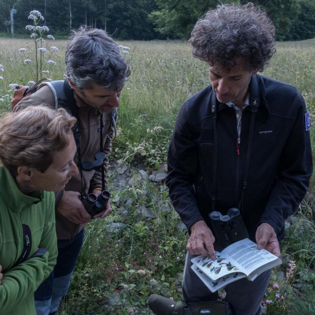 Ecoute et observation des oiseaux - Ecrins de nature - juin 2018 Bourg d'Oisans - photo B.Clouet