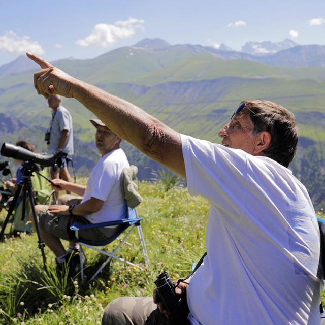 Grands rapaces au col de Sarenne avec Envergures Alpines  - Ecrins de nature - juin 2018 Bourg d'Oisans - © P.Saulay - Parc national des Ecrins