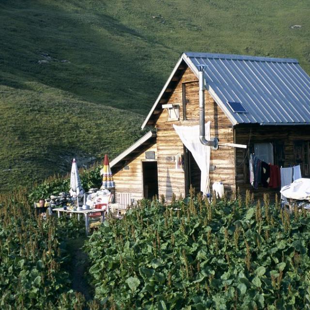 Cabane des Pâles - Valgaudemar © D. Vincent - Parc national des Ecrins
