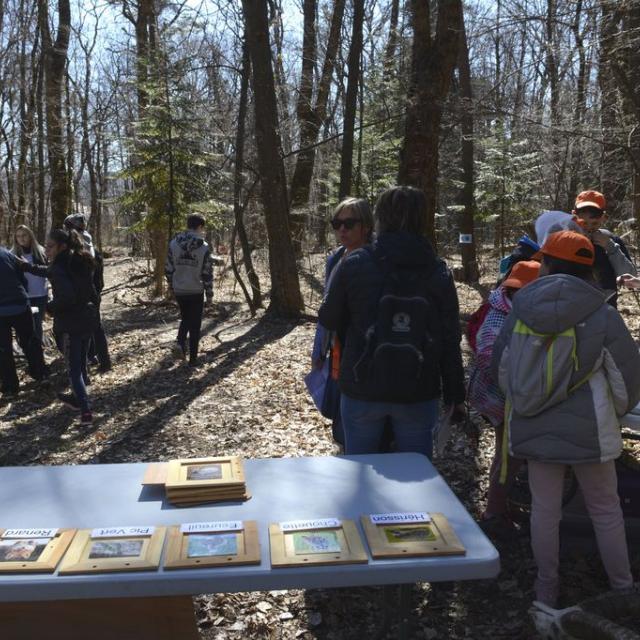Tous en forêt -21 mars 2019 - photo D.Vincent - Parc national des Ecrins