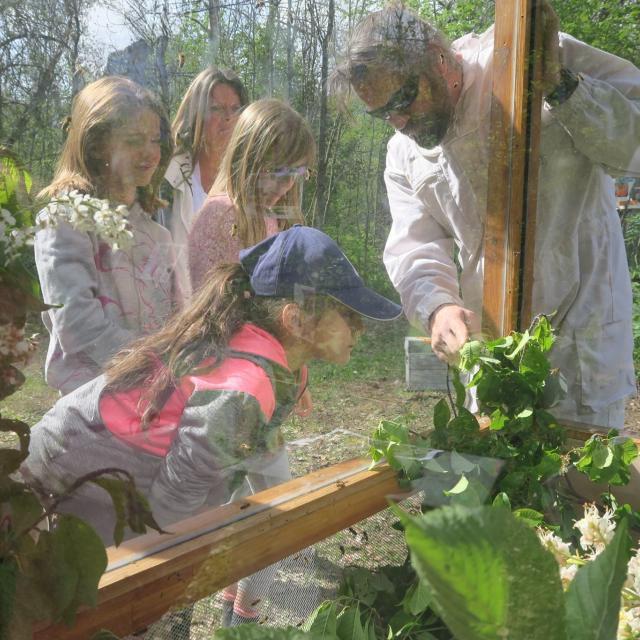 apimobile - -scolaires -Ecrins de nature 2019 - Vallouise - photo C.Gondre - Parc national des Ecrins