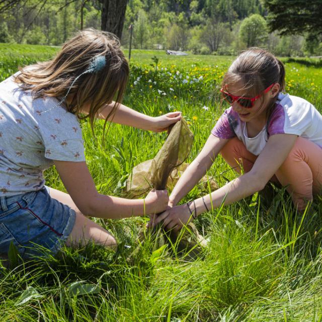 insectes -  scolaires -Ecrins de nature 2019 - Vallouise - photo T.Maillet - Parc national des Ecrins