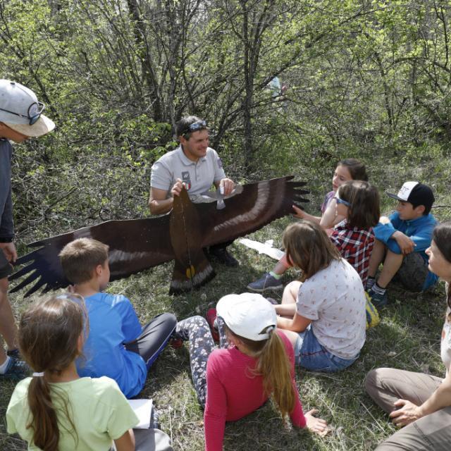 Rapaces -scolaires -Ecrins de nature 2019 - Vallouise - photo P.Saulay - Parc national des Ecrins