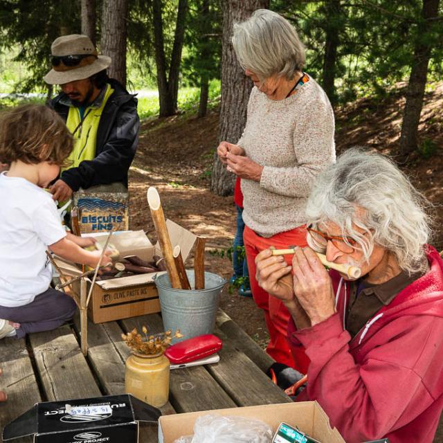 Musique verte -  Ecrins de nature 2019 en Vallouise - © Thierry Maillet -Parc national des Ecrins